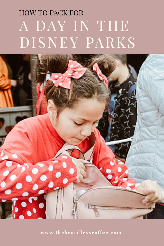 how-to-pack-for-a-day-in-disney-parks-family